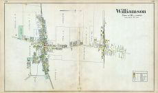 Williamson 002, Wayne County 1904
